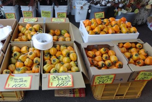 道の駅 来夢とごうち 祇園坊柿がたくさん