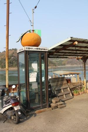 大崎下島の みかん電話ボックス 画像3