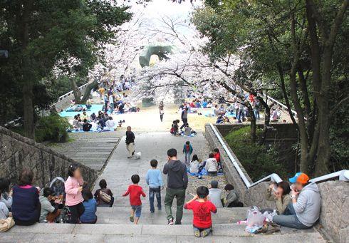比治山公園の桜 画像1