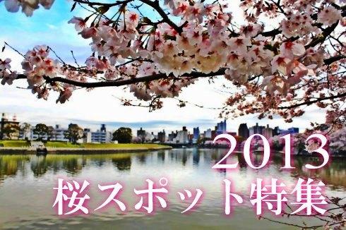 広島の 桜スポット(桜まつり)2013 見ごろ時期まとめ
