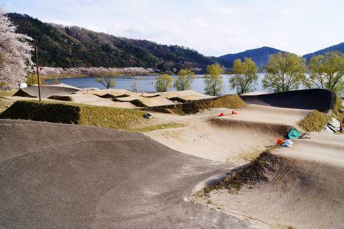 土師ダムの桜 BMXコース