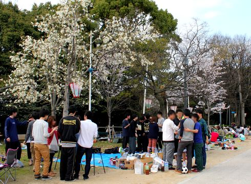 比治山公園のお花見の様子3