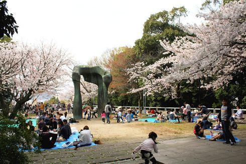 比治山公園の桜 と現代美術館のオブジェ