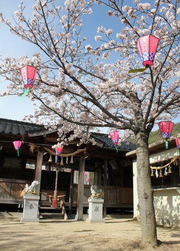 廿日市市 大田神社 本殿の画像