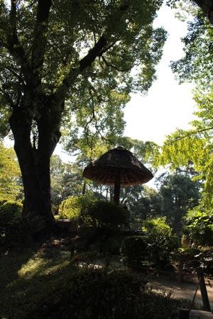 縮景園 茅葺き屋根のベンチ