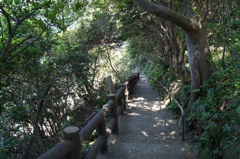 因島 地蔵鼻への道 画像2