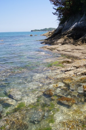 因島 地蔵鼻の周りの景色