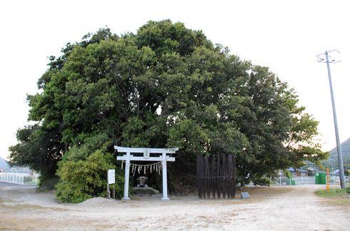 生口島 島ごと美術館 塩池