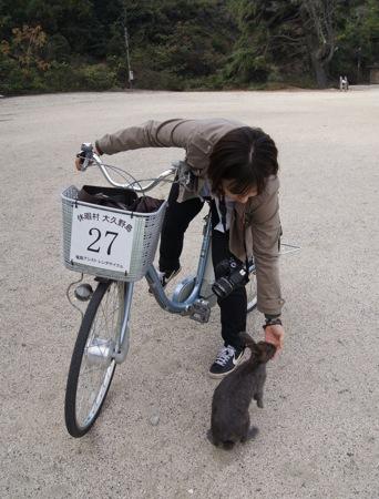 大久野島 レンタサイクルで うさぎと戯れる