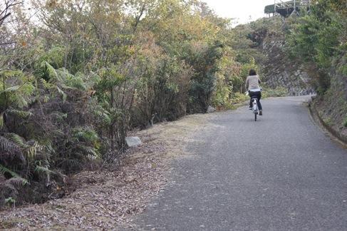 大久野島 レンタサイクルの画像