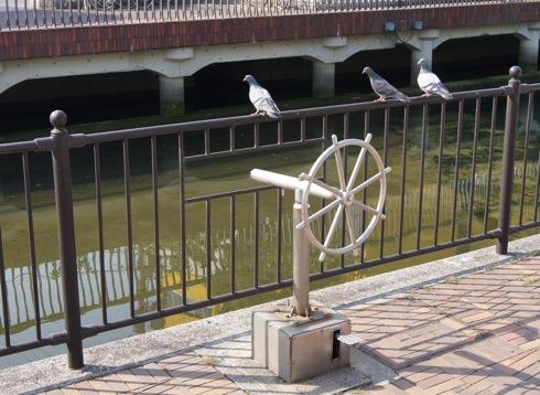 呉市 中央公園そばの川の風景2