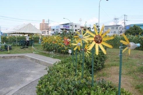 海田町の ひまわり畑のまわり