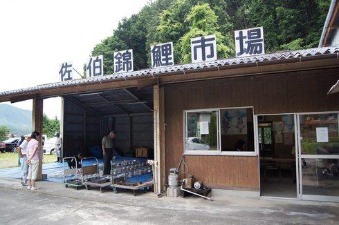 佐伯錦鯉市場 の外観画像