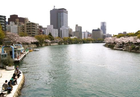 広島平和公園 川沿いの桜