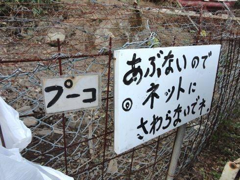 東広島市のライダーハウス、旅の宿 ルート375 プーコ