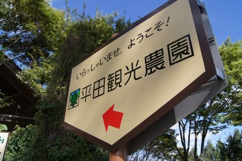 平田観光農園 の写真