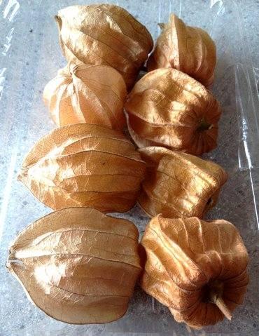 食用ほおずき、オレンジ色の袋に包まれている