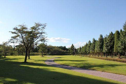 湧永庭園 芝の道