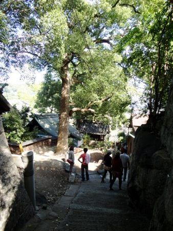 猫の細道 神社の横