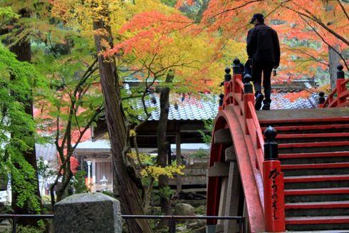 今高野山 紅葉の画像2
