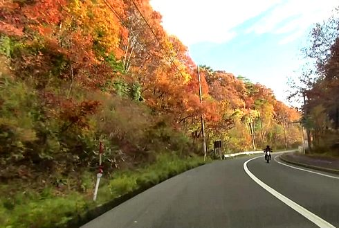 秋色に染まった北広島町の風景