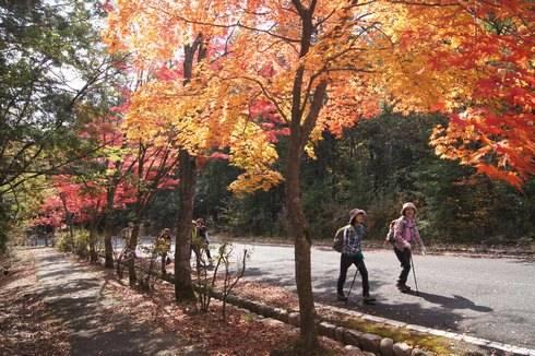 三倉岳の紅葉 登山に向かう人々