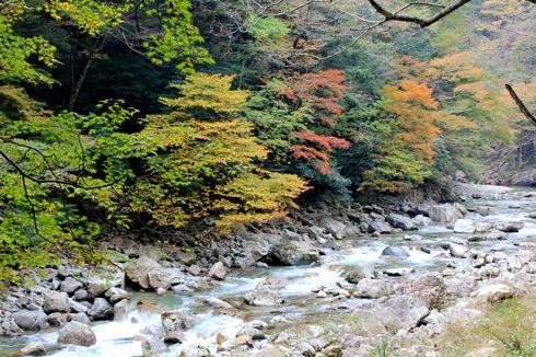三段峡 紅葉の様子