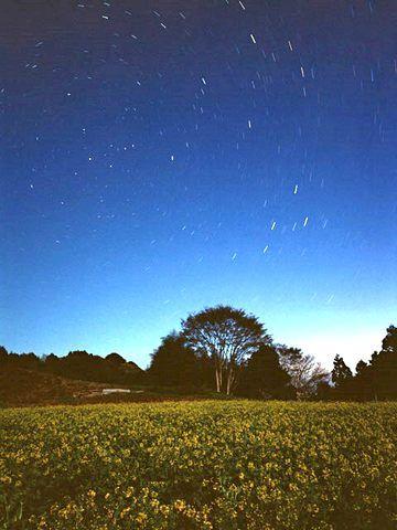 こぐま座流星群2013、見頃(ピーク)は12月22日の夜!時間・方角は