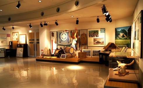モグラ博物館(比和自然科学博物館) 画像4