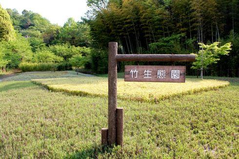 バンブージョイハイランド 竹生態園