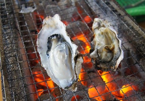 大久保公園(東京)に牡蠣小屋が出現!3月30日まで 広島牡蠣フェスタ