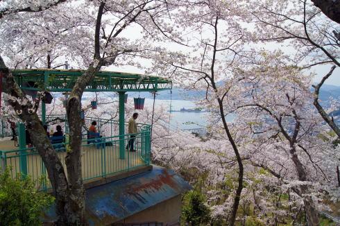 安芸津 正福寺山公園 画像3