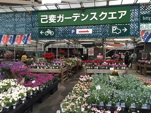 己斐ガーデンスクエア、広島市西区にある老舗の花屋さん