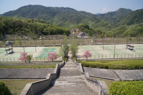 瀬野川公園 テニスコート