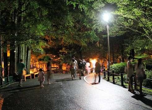安佐動物園、夜の園内の様子