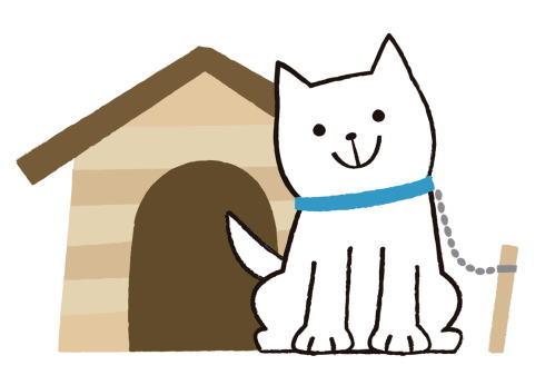 災害で迷子犬になってからでは遅い!飼い犬登録・注射済票の装着OK?