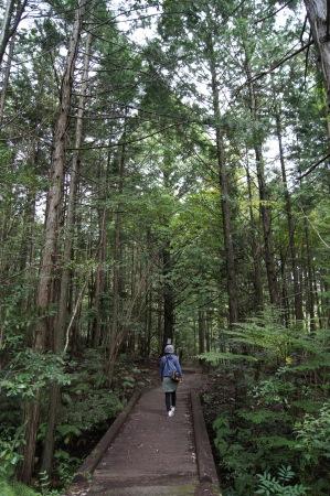 三倉岳 登山の様子2