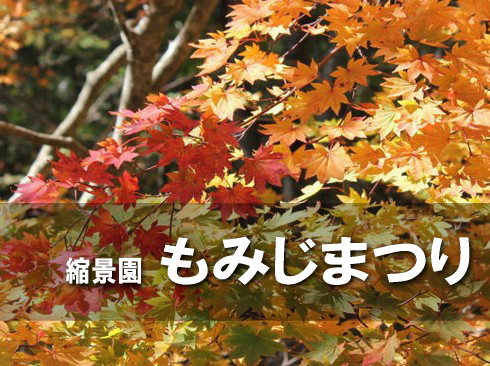 縮景園もみじまつり2014、秋色に染まった庭園でお茶会も