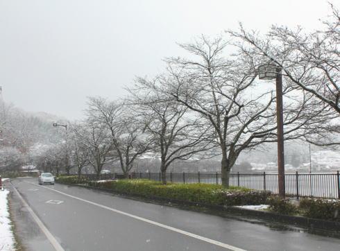 庄原 上野公園の雪景色