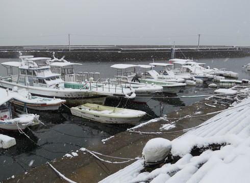 12月17日の大雪 大竹市1