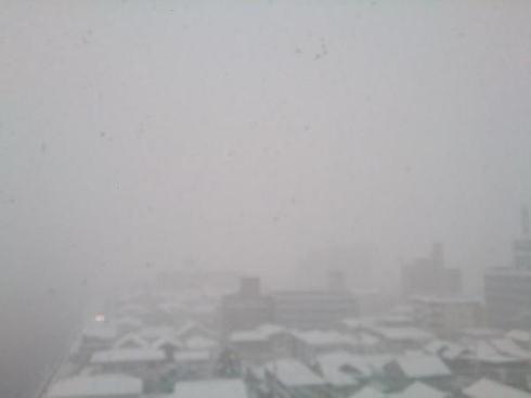 12月17日の大雪 広島市西区