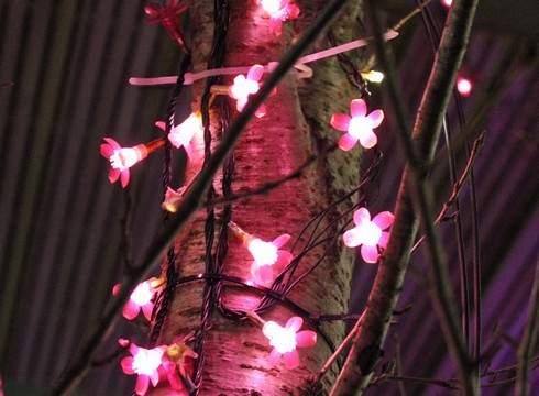 庄原市役所 イルミネーション、小さな花に