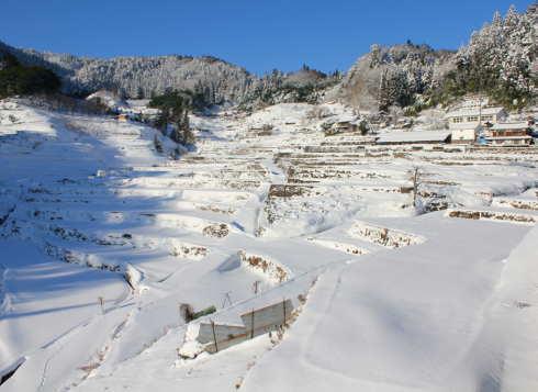 冬の日本の原風景、井仁の棚田が雪景色に