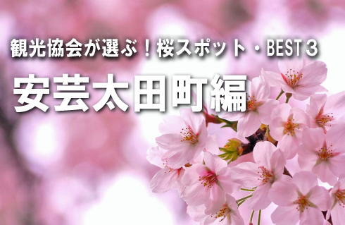 広島の観光協会が選ぶ!桜スポットBEST3 【安芸太田町編】