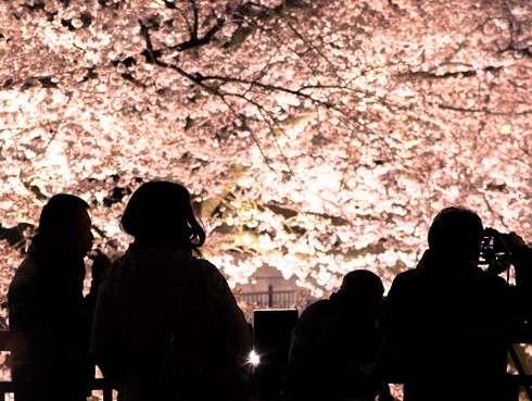 4月4日の皆既月食、地域によっては桜との共演も