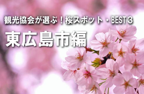 広島の観光協会が選ぶ!桜スポットBEST3 【東広島市編】