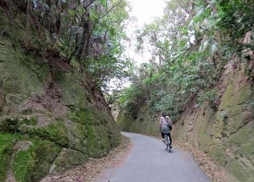 佐木島 塔の峰千本桜 までの上り坂