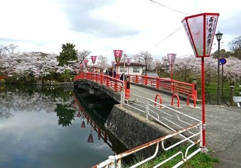 庄原 上野公園の桜 画像2