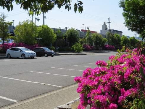 緑町公園 駐車場