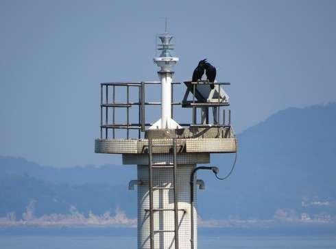 玉津島の灯台